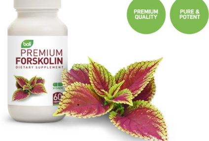 Forskolin – Things to know about Forskolin