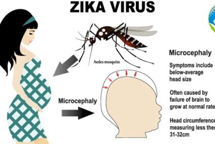 Occurrence of Zika Virus in the United States of America