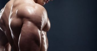 Tips in Choosing the Most Important Supplements for Muscle Mass Growth